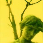 Polaroid 73 (Ausschnitt,NB) Norbert W. Schlinkert