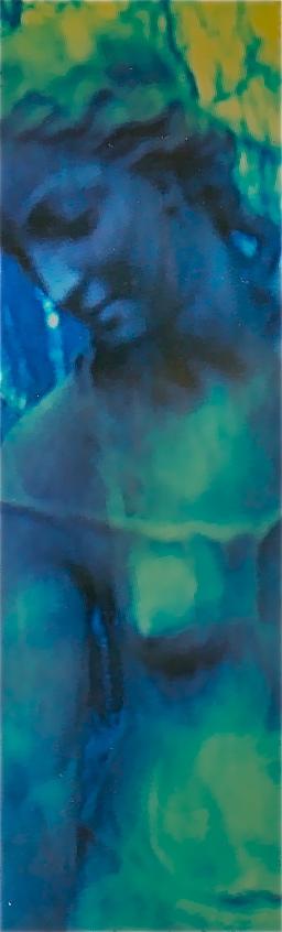 Polaroid 28 (NB 1) Norbert W. Schlinkert